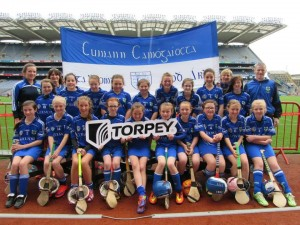 camogie july2015